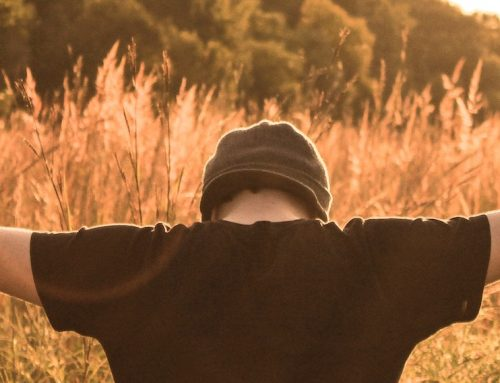 Lebenslehrer-Impuls zum Buß-und Bettag
