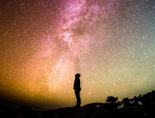 Das menschenfreundliche Universum